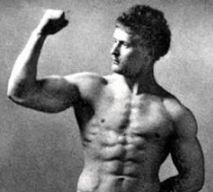 Masa musculara 4