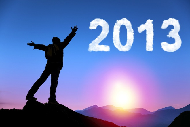 obiective 2013