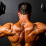 Cele 2 Mecanisme de crestere in Masa Musculara
