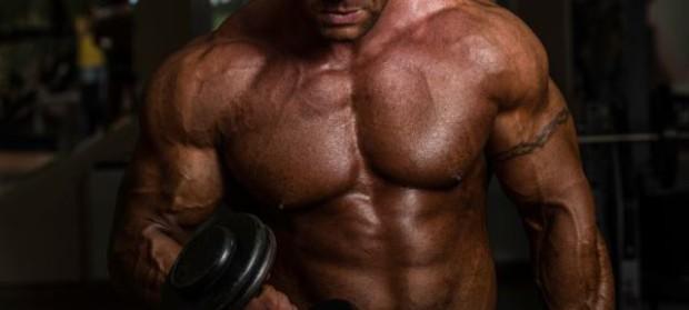Cat de mult si de repede poti creste in masa musculara