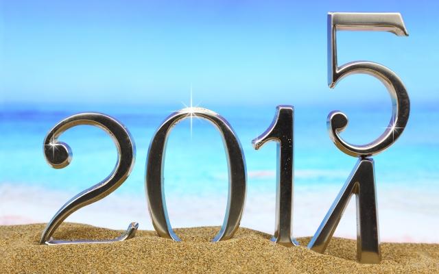 Lectiile Anului 2014, Obiectivele pe 2015