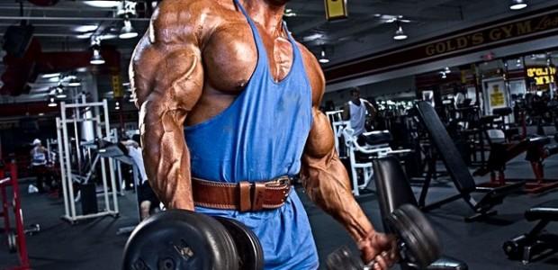 Masa Musculara Rapida - Orice Grupa
