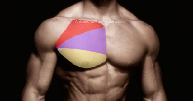 Exercitii Piept Masa Musculara