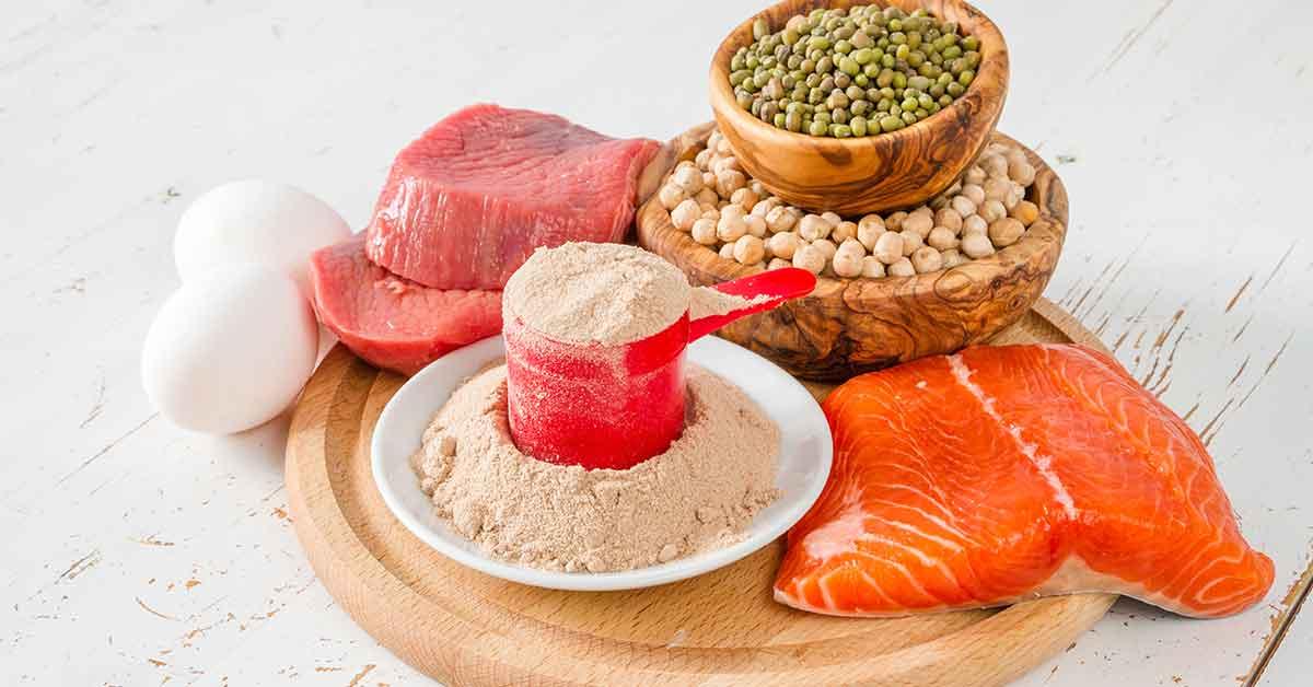 greseli alimentare - proteine